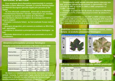 Poster 2 SCDVV Murfatlar